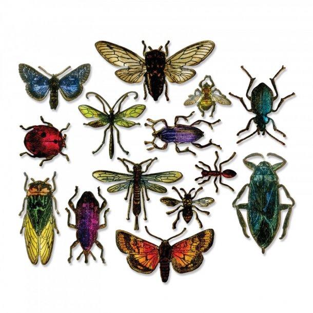 Sizzix-Tim Holtz Framelits Die - 663068 - Entomology