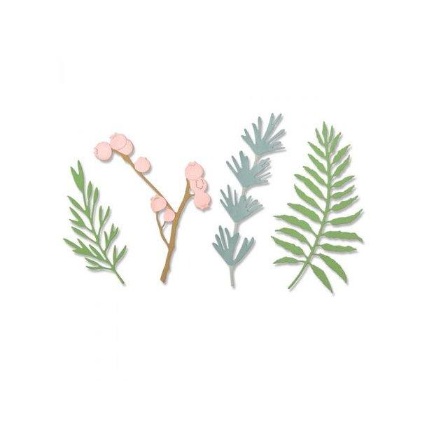 Sizzix - Thinlits Die - 664361 - Natural Leaves